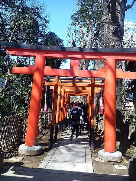上野公園-5