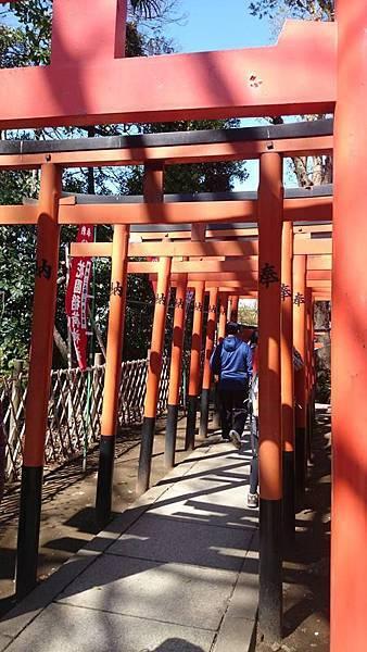 上野公園-6