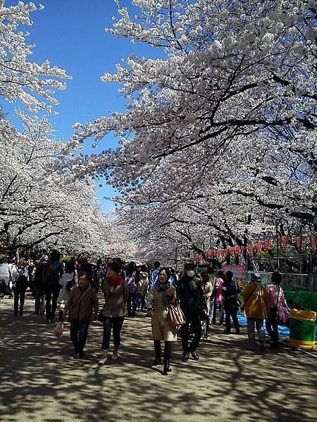 上野公園-1