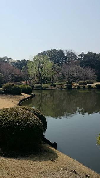 新宿御苑-5