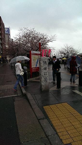 隅田公園-1
