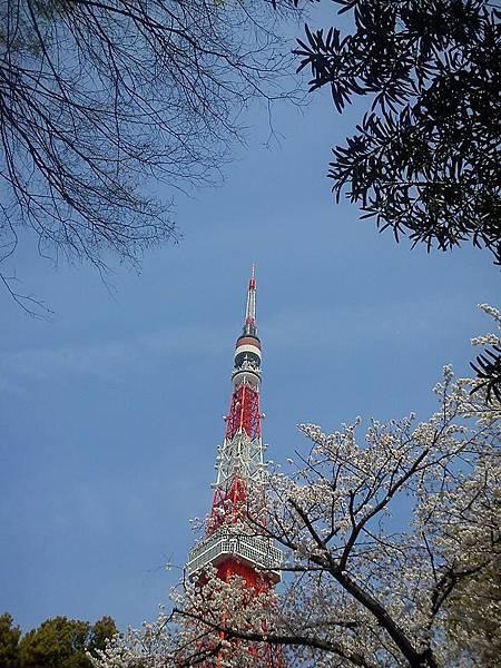 東京鐵塔-6