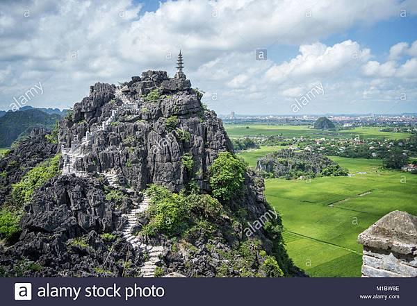 top-pagoda-of-hang-mua-temple-rice-fields-ninh-binh-vietnam-M1BW8E.jpg