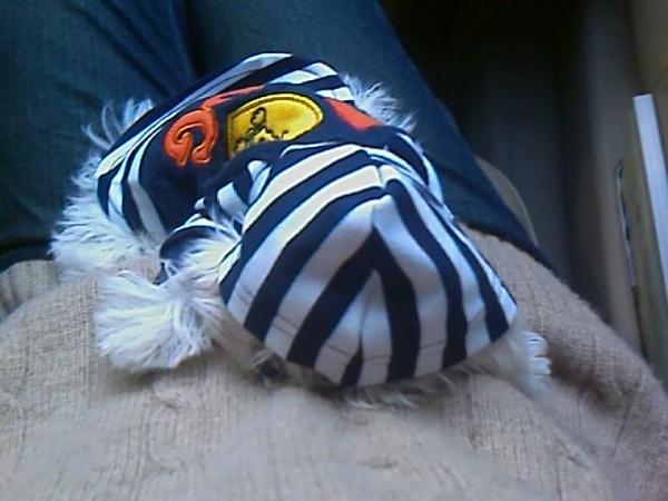 貝貝睡睡姿勢喬超快也睡超快的...