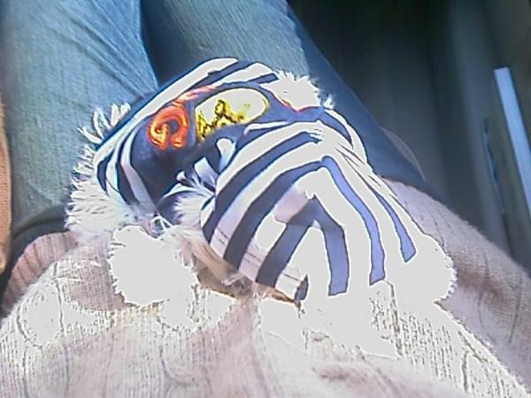 貝貝一穿好衣服就趴在媽咪身上睡著了