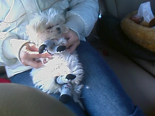 姨姨幫貝貝穿襪子