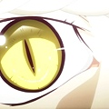 貓物語(白) (YYDM-11FANS) -02[翼虎  其之二][BDRIP][720P][X264-10bit_AACx2][(021254)2016-05-15-13-47-24].JPG