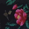 神劍闖江湖 追憶篇1.rmvb_20200327_182256.467.jpg