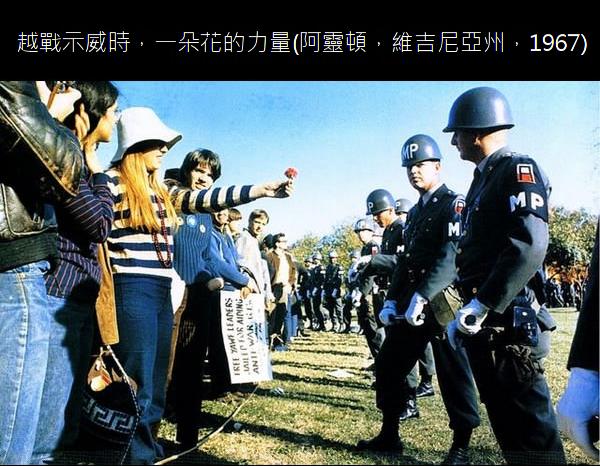 23.越戰示威時,一朵花的力量.23.png