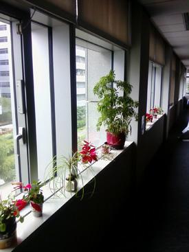 台灣創意設計中心 Taiwan Design Center 回顧5月國立成功大學工業設計學系系友大會 (地址,設計圖書館,創新設計研究室,招考)17