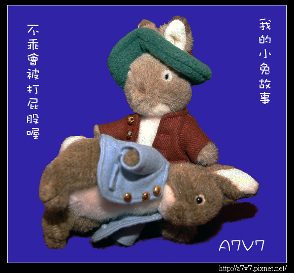 yahoo_MG_8256.jpg