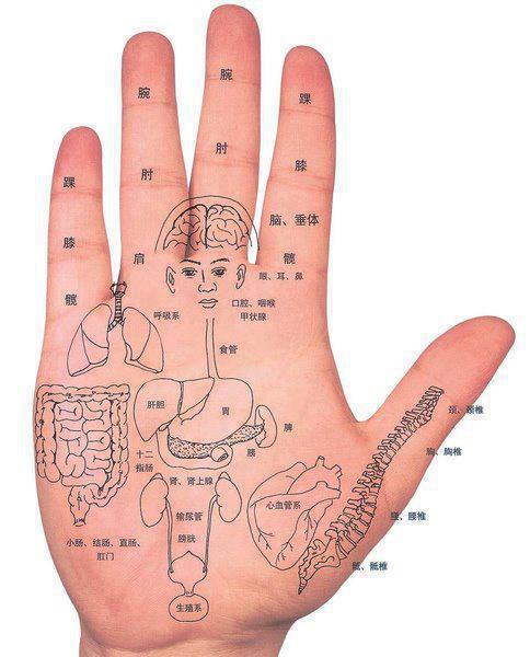 手掌自我按摩保健圖