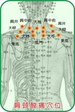 人體肩頸穴位圖.bmp