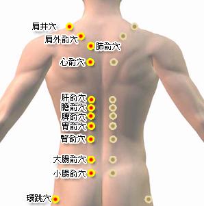 背部太陽膀胱經穴位.jpg
