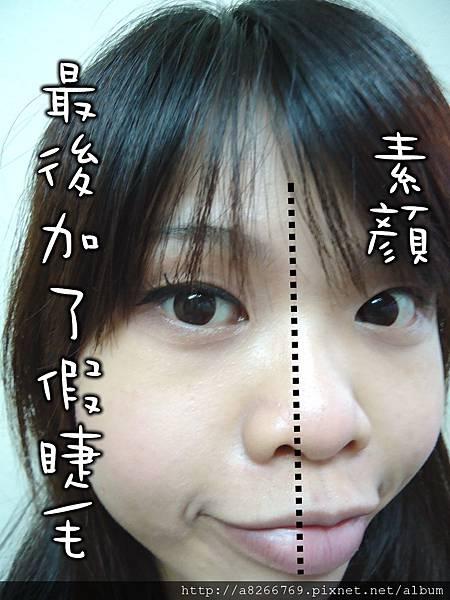 DSC03661.jpg