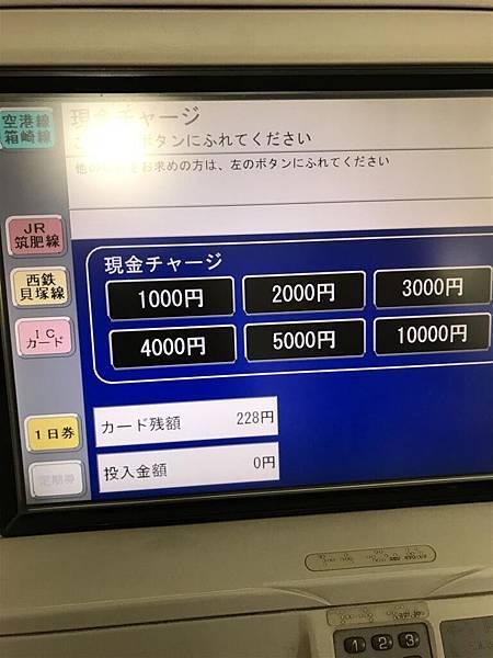 IMG_7056 (Large).JPG