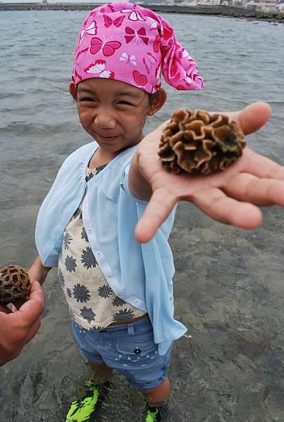 找尋活珊瑚.JPG