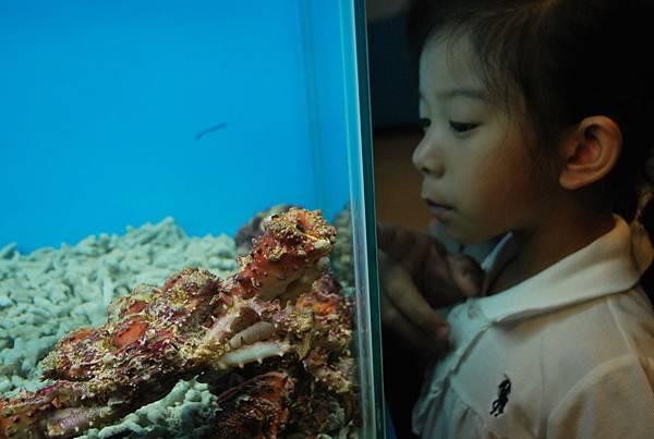 螃蟹博物館.JPG