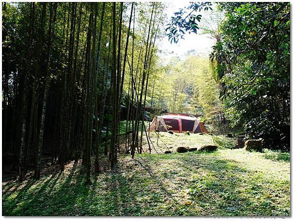 竹林帳篷.jpg