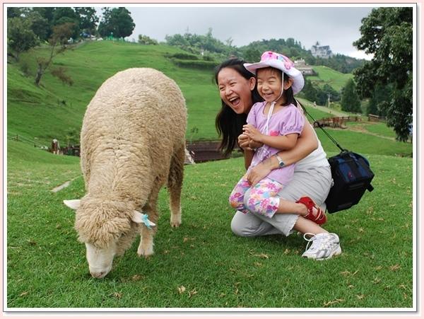 我摸到了羊了.jpg