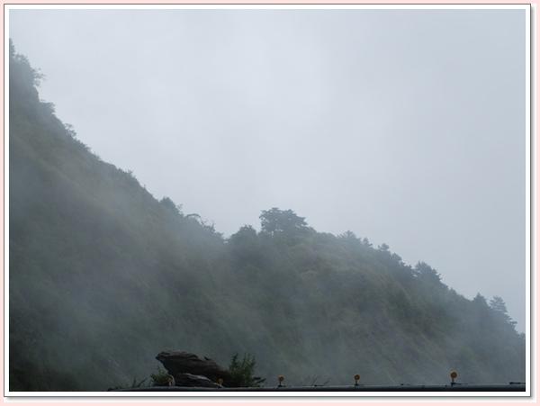 青蛙雲霧.jpg
