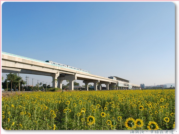 捷運橋頭站.jpg