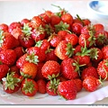今天摘的草莓.jpg