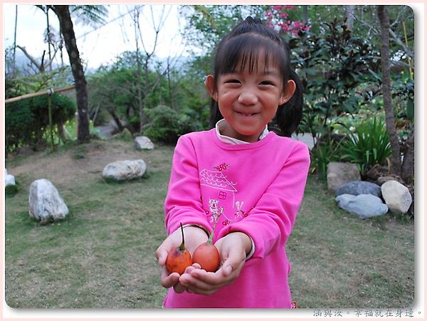 阿姨送給我們好吃的山番茄喔.jpg