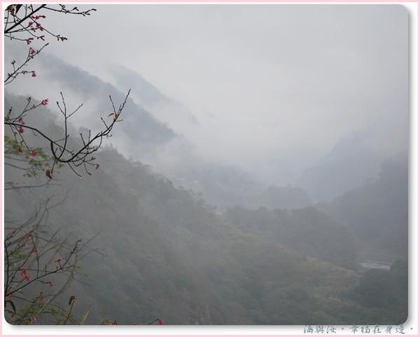 霧中的山谷.jpg