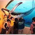 孩子們擠在一起推鯨魚.jpg