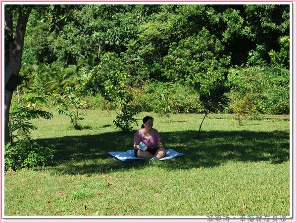 阿姨在樹蔭下看書.jpg