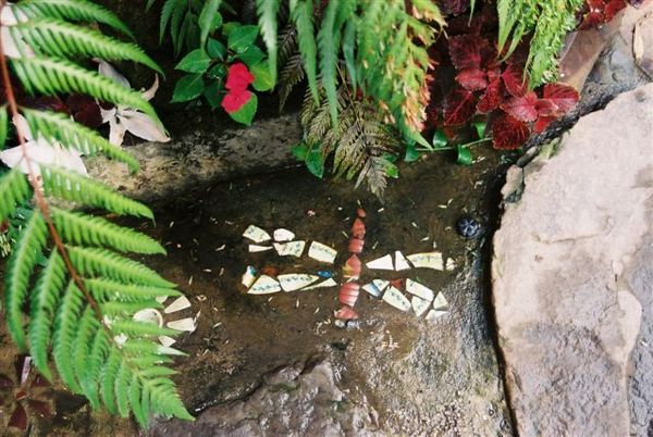 3蜻蜓磚.JPG