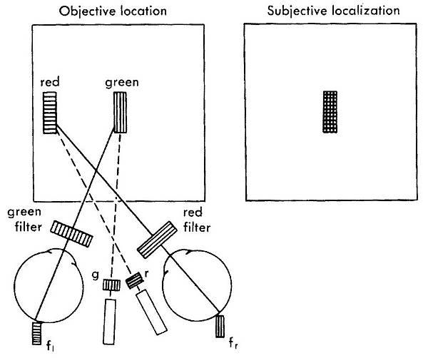12-27 Haploscopic test