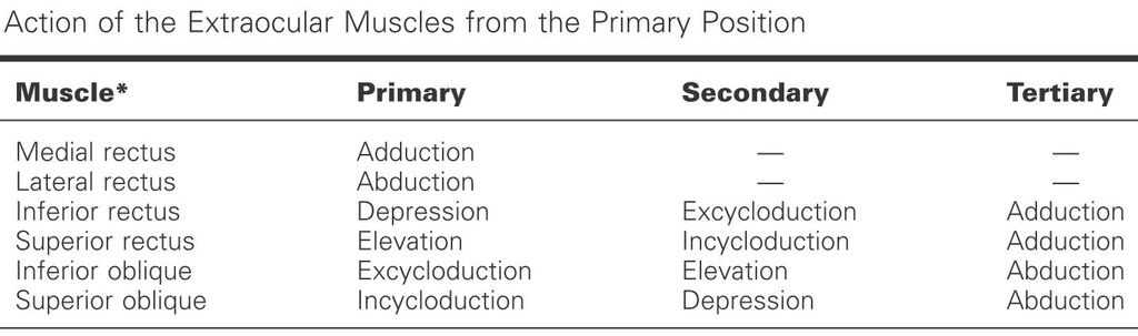 actions at primary position