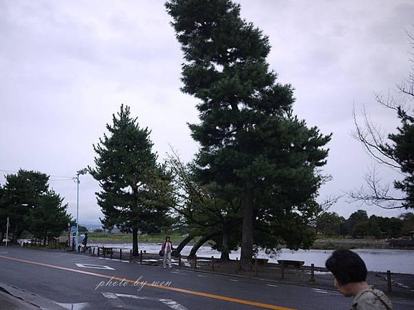 P1150603_副本.jpg