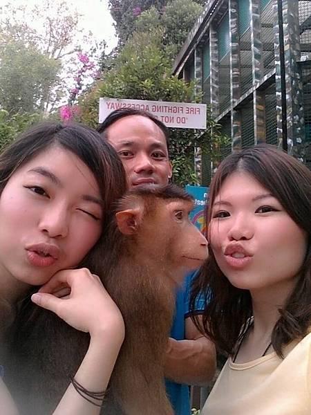 monkey micky