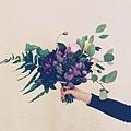 優雅的大理花就像絨布一樣舒適,適合妳獨有,妳就像一杯溫開水,讓人舒適(女孩)。.jpg