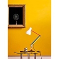 Type 75 Paul Smith 3 (Photo Credit:ANGLEPOISE)