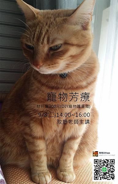 寵物芳療2015-2