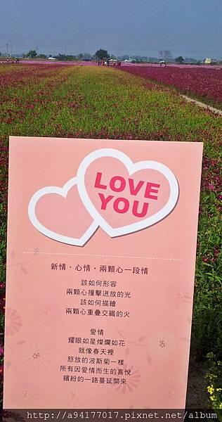 20140131_143006.jpg