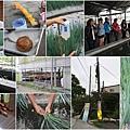 20140401水保女排9.jpg