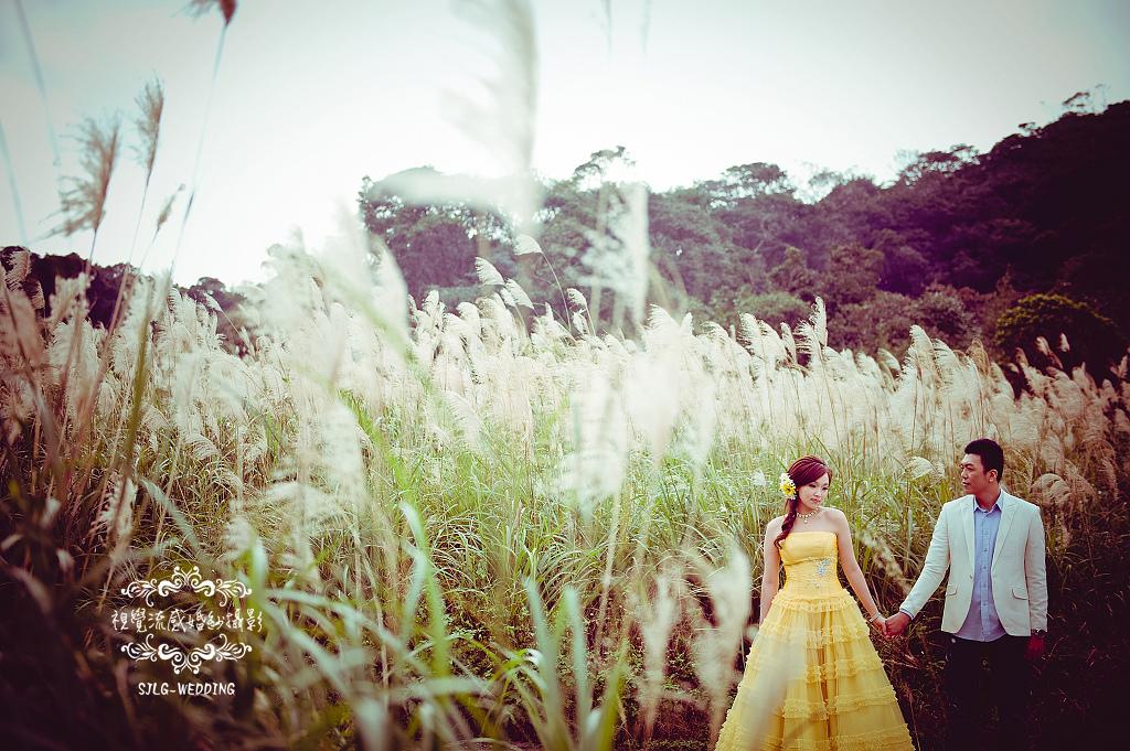 自助婚紗 婚紗攝影 台北視覺流感婚紗攝影工作室 中和 板橋 sjlg-wedding (6).jpg