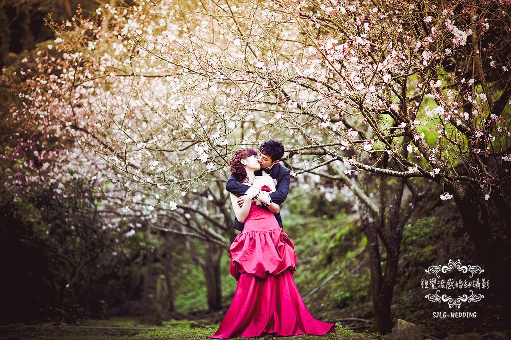 自助婚紗 婚紗攝影 台北視覺流感婚紗攝影工作室 中和 板橋 sjlg-wedding (14).jpg