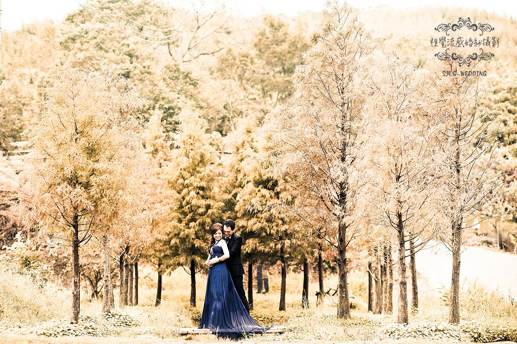 自助婚紗 婚紗攝影 台北視覺流感婚紗攝影工作室 中和 板橋 sjlg-wedding (30).jpg