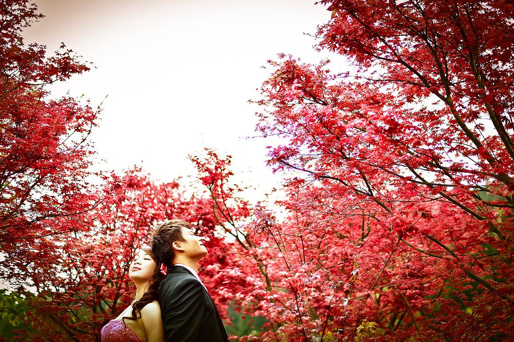 自助婚紗 婚紗攝影 台北視覺流感婚紗攝影工作室 中和 板橋 sjlg-wedding (42).jpg