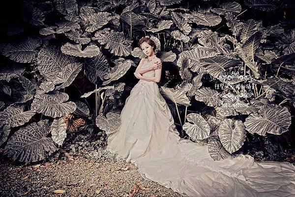 自助婚紗 婚紗攝影 台北視覺流感婚紗攝影工作室 中和 板橋 sjlg-wedding 精選 DEAR攝影基地 永和 出租禮服 sjlg-wedding 風格婚紗 韓風婚紗 特色婚紗 (173).jpg