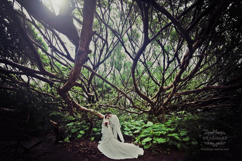 視覺流感婚紗 自助婚紗 婚紗攝影 台北婚紗攝影工作室 中和 板橋 永和 出租禮服 sjlg-wedding 風格婚紗8