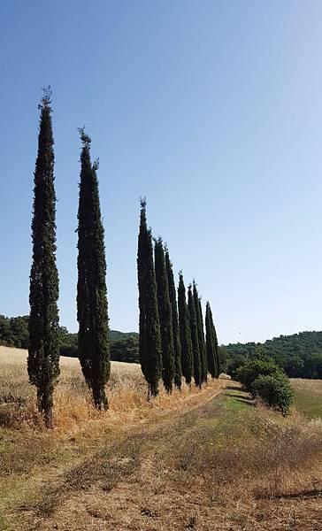 義大利山城-托斯卡尼一景