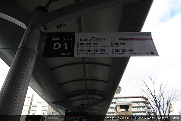 IMG_2375.JPG