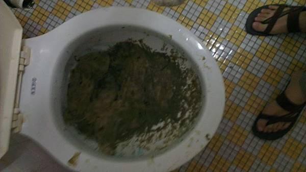 馬桶塞衛生紙